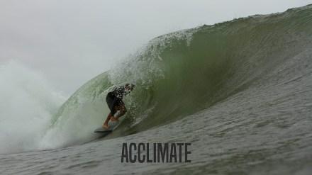 acclimate